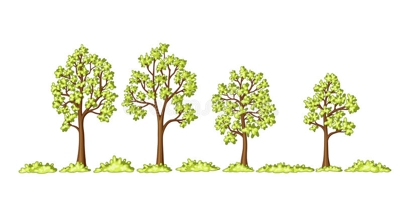 Illustration of some trees and bushes. Vector royalty free illustration