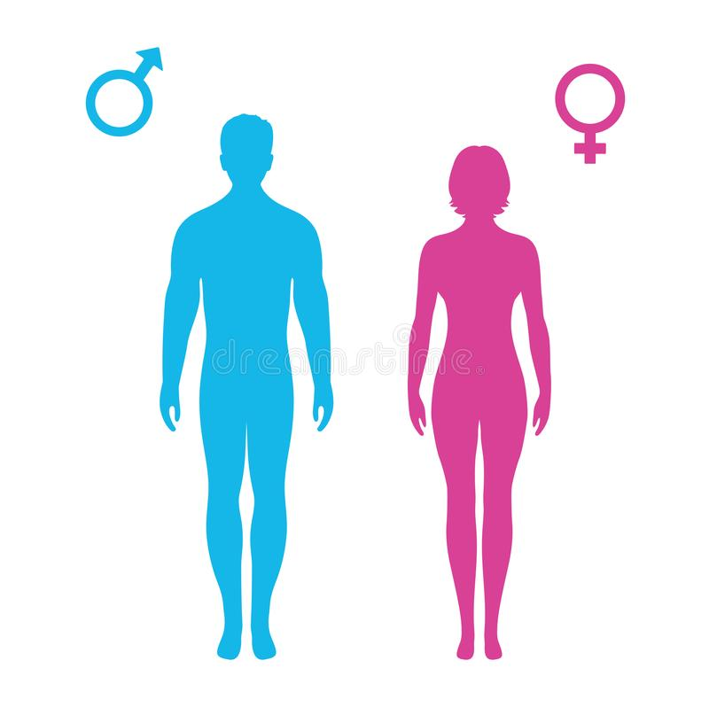 illustration of standing silhouettes of man and woman, female and male signs stock illustration