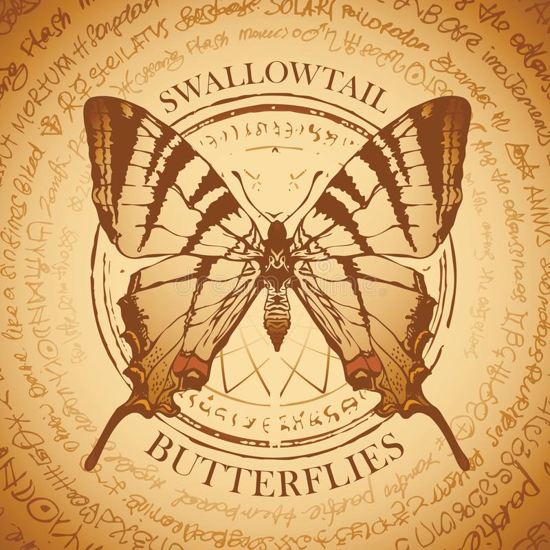 Vector beige banner with a Swallowtail butterfly royalty free illustration
