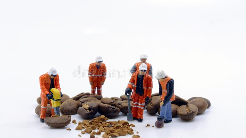 Workers breaking coffee beans stock photo