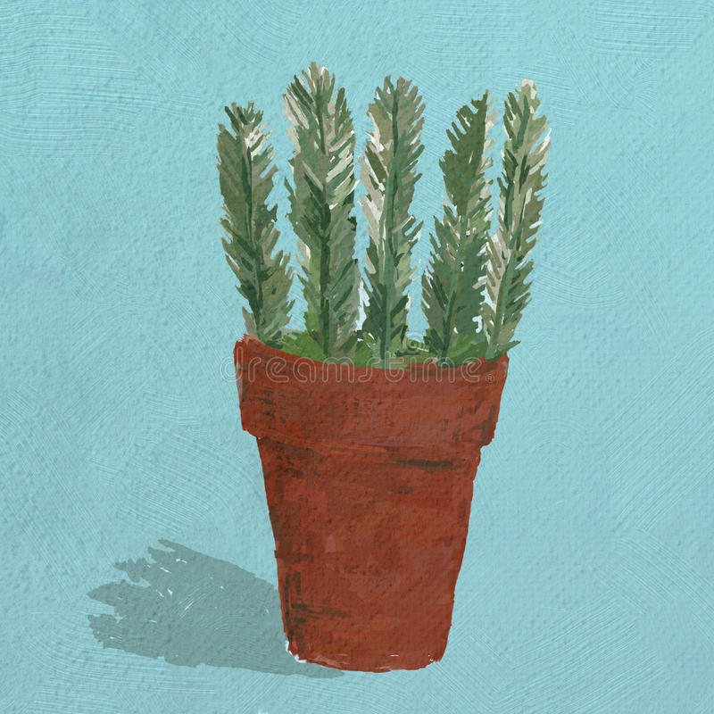 An illustration of a terracotta pot with a Rosemary plant stock photography