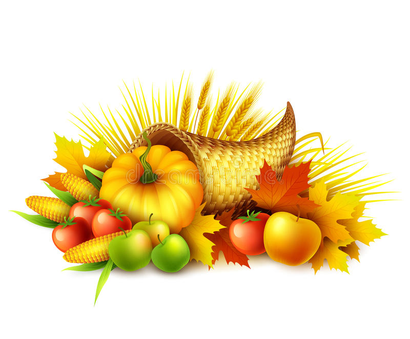 Illustration of a Thanksgiving cornucopia full of harvest fruits and vegetables. Fall greeting design. Autumn harvest royalty free illustration