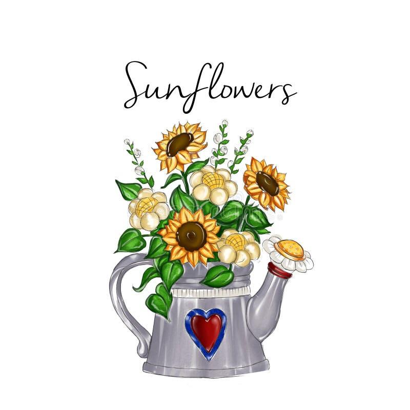 Illustration tirée par la main - boîte de arrosage intérieure en métal de bouquet de tournesol illustration de vecteur