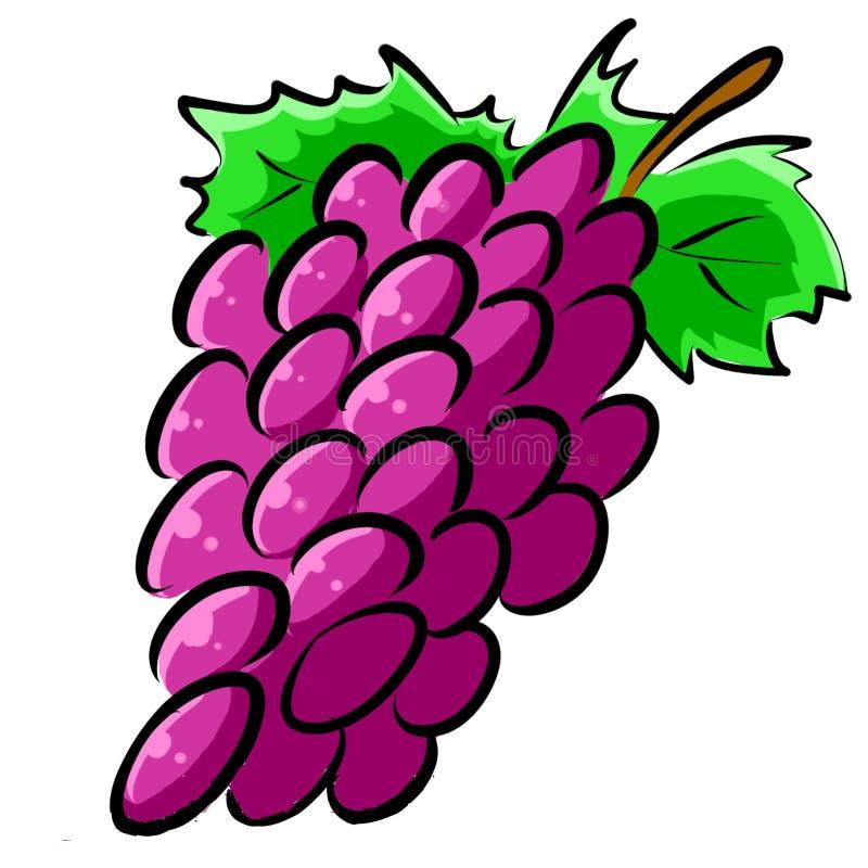 Illustration tirée par la main Clipart de raisins image libre de droits