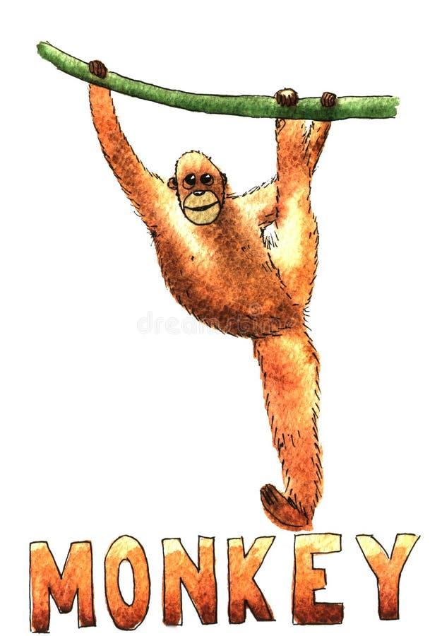 Illustration tirée par la main d'aquarelle d'ascension de singe d'isolement illustration stock