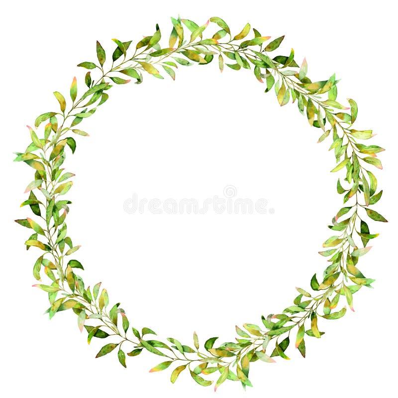 Illustration tirée par la main d'aquarelle Guirlande botanique des branches et des feuilles vertes images libres de droits