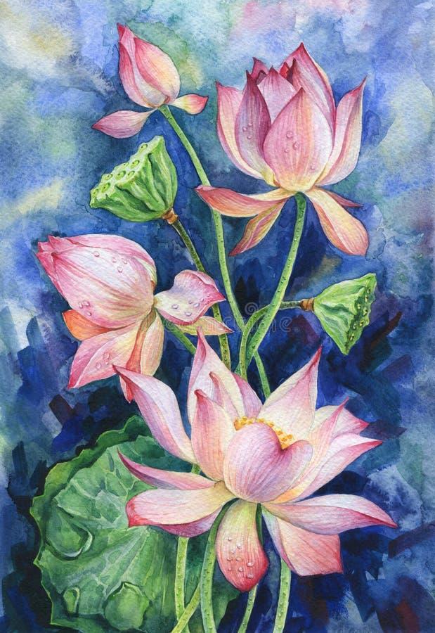 Illustration tirée par la main d'aquarelle Lotus roses illustration de vecteur
