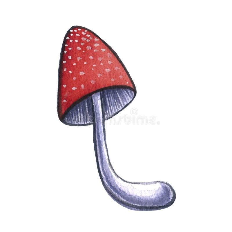Illustration tirée par la main d'aquarelle d'un champignon de gland de feuille sur le fond blanc Temps de chute d'automne moisson images libres de droits