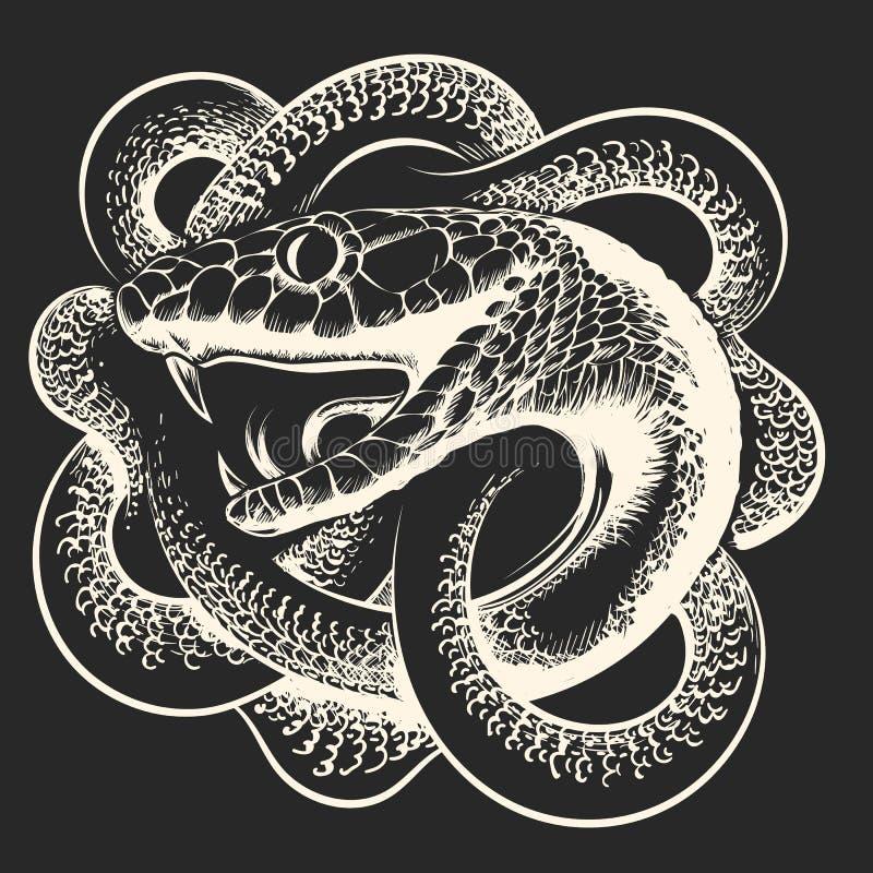 Illustration tir?e par la main de serpent enroul? illustration stock