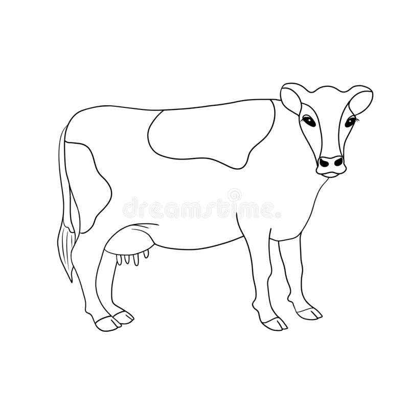 Illustration tirée par la main de vache à animal de ferme de schéma d'isolement sur le fond blanc illustration de vecteur