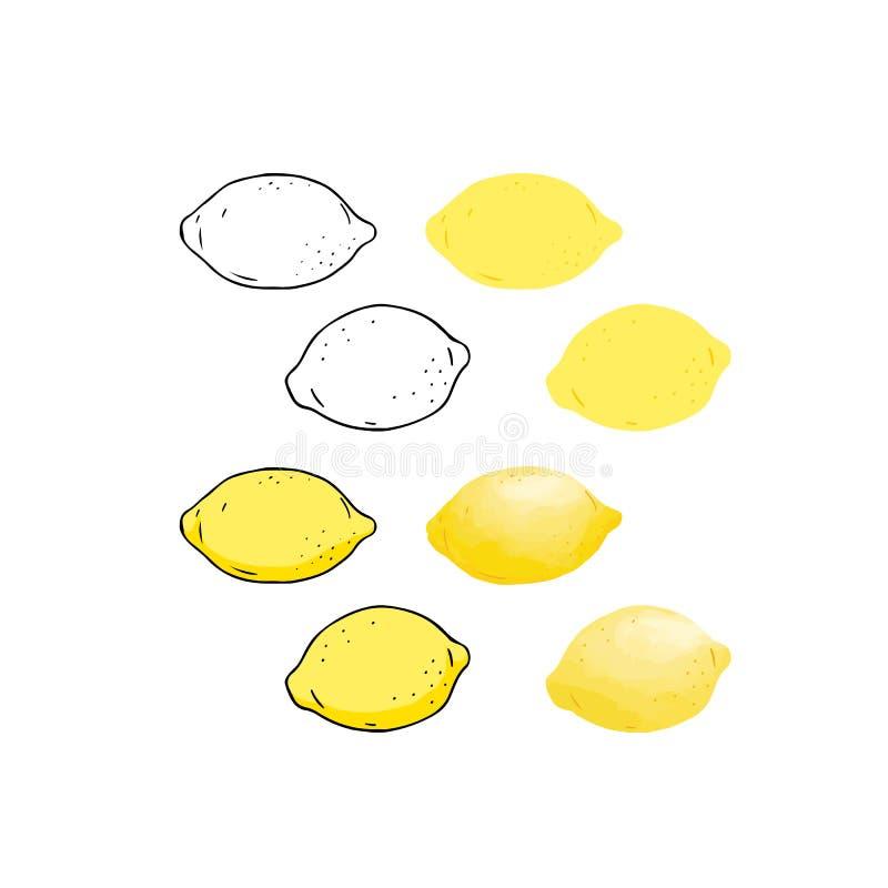 Illustration tirée par la main de vecteur de contour de citron, couleur, style d'aquarelle illustration stock