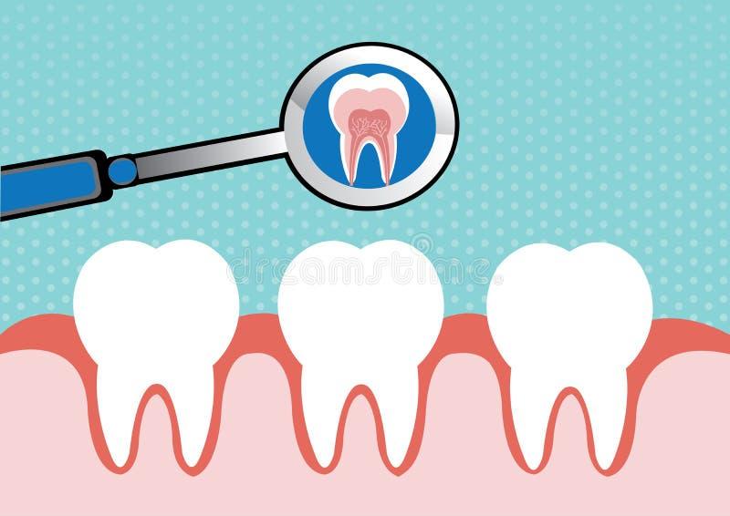 Illustration of tooth stock illustration