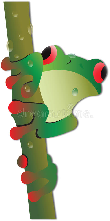 Illustration Of Tree Frog Stock Photography