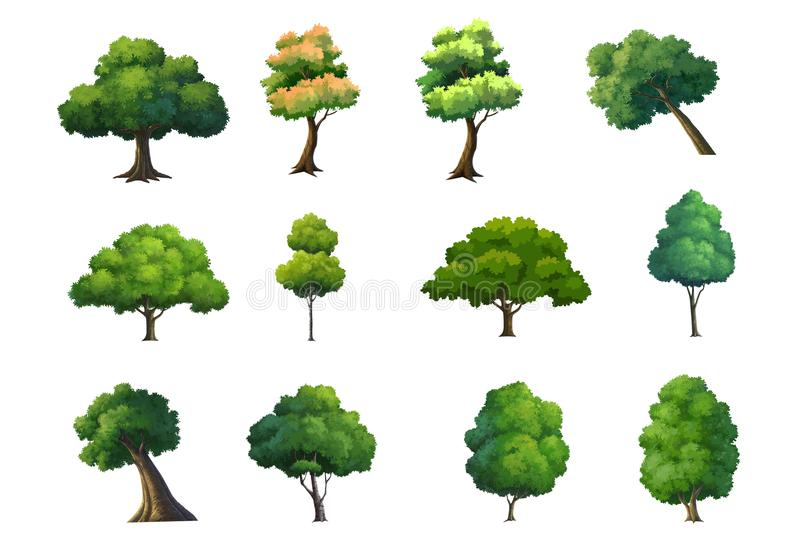 Illustration of trees isolated on white background. vector illustration