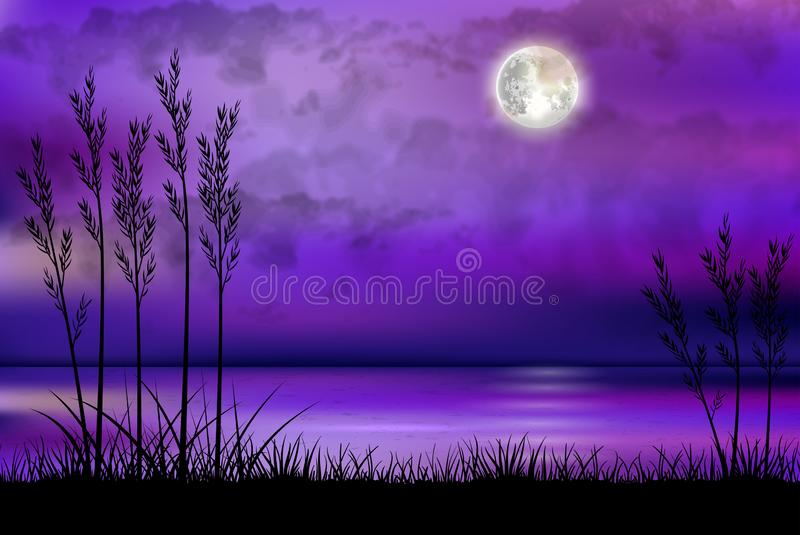 Illustration of tropical beach at night stock image
