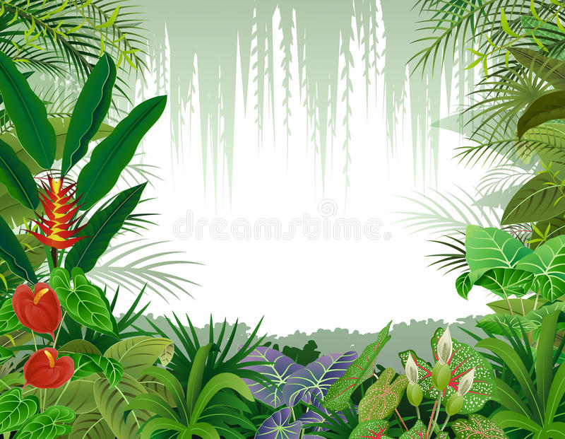 Illustration of tropical forest background royalty free illustration