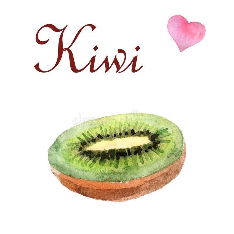 Illustration tropicale d'aquarelle avec le kiwi sur un fond blanc illustration libre de droits