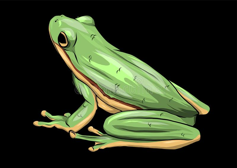 Illustration un vecteur de dessin de grenouille verte de bande dessin?e illustration libre de droits
