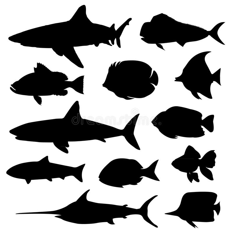 Illustration vector of different kinds of Fish Silhouette. royalty free illustration
