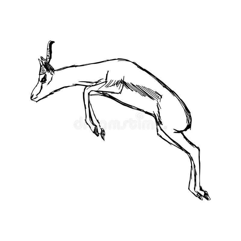 Illustration vector hand draw doodles of gazelle jumping isolate royalty free illustration