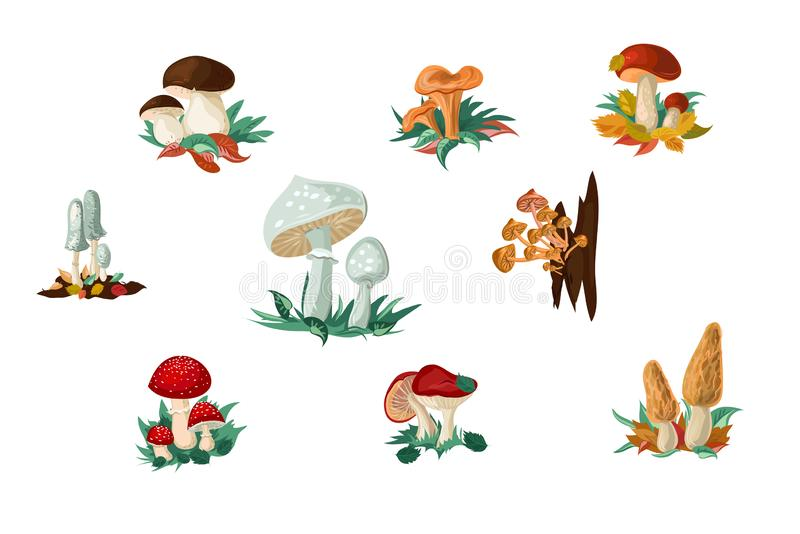 Illustration vectorielle d'un ensemble de champignons et de tabourets en dessin animé plat illustration de vecteur