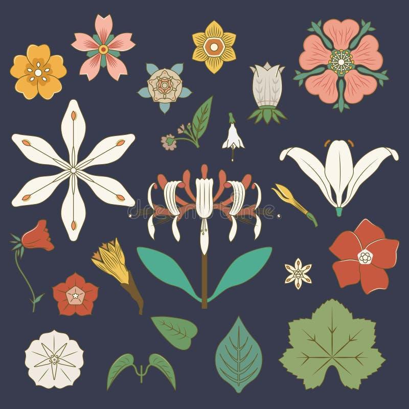 Illustration of vintage floral prints inspired vector illustration