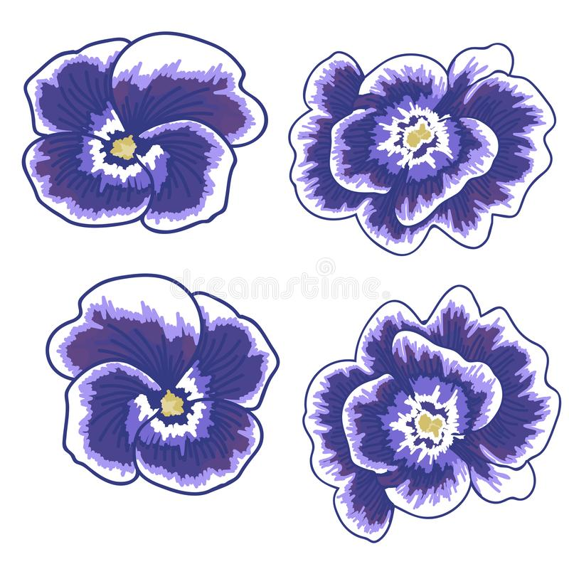 Illustration of a violet flower on a white background. isolated violet object. vector illustration vector illustration