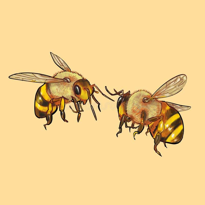 Illustration von den Bienen, die zusammen fliegen lizenzfreie abbildung