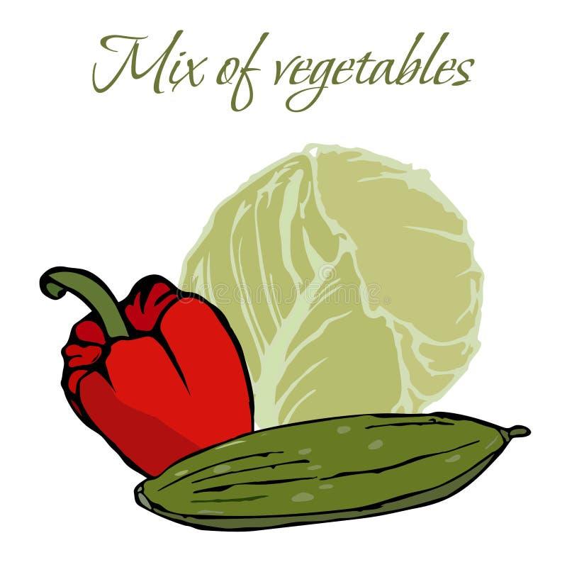 Illustration von geschmackvollen Veggies lizenzfreie stockbilder