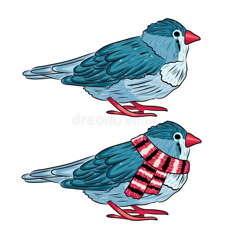 Illustration von gleichen warmen angekleidet des Vogels und ausgezogen lizenzfreie abbildung