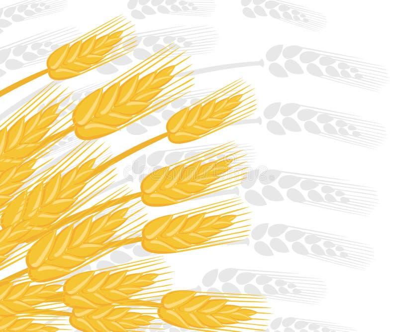 Illustration von Weizenähren Landwirtschaftsweizen Silberne Schattenbildweizenähren auf Hintergrund Flache Vektorillustration lizenzfreie stockbilder