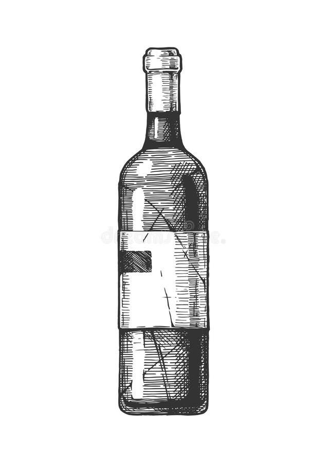 Illustration of Wine bottle. Vector hand drawn illustration of wine bottle in vintage engraved style. Isolated on white background royalty free illustration