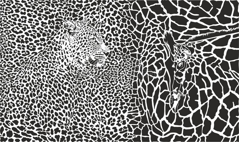 IllustrationBackground del vector con el leopardo y la jirafa ilustración del vector
