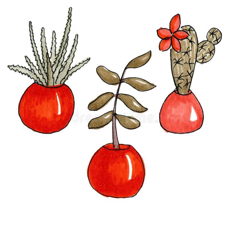 Illustrationen av skissar markörer ställde in av inomhus blommor vektor illustrationer