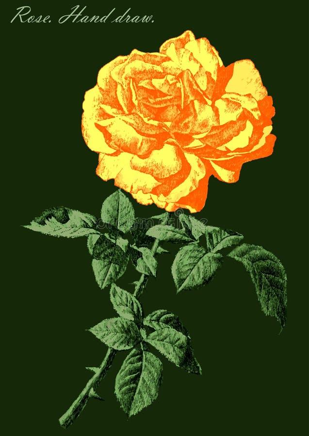 Illustrationen med kulört steg på en grön bakgrund stock illustrationer