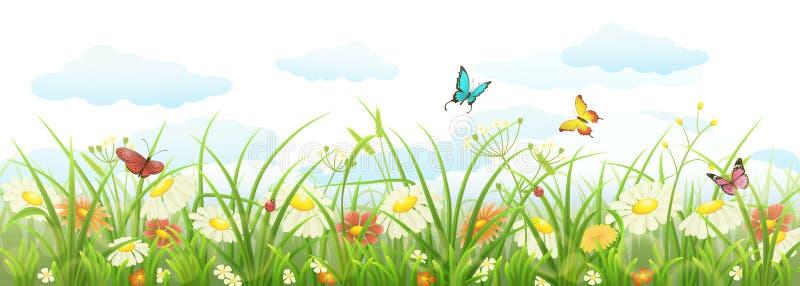 illustrationer för blommagräsillustration mer min seamless fjäder för naturportfölj stock illustrationer