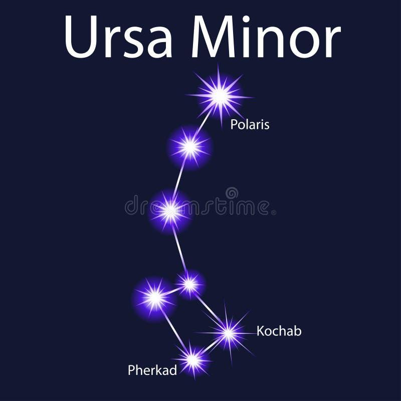 Illustrationkonstellation Ursa Minor med stjärnor Pherkad, Kocha stock illustrationer