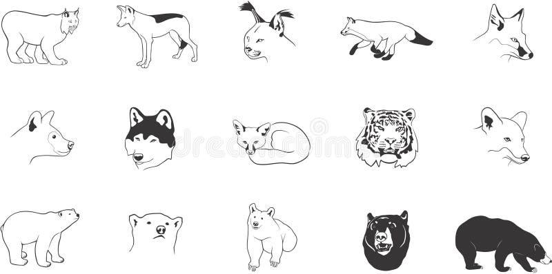 Illustrations animales prédatrices illustration de vecteur