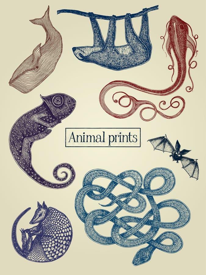 illustrations d'animaux illustration de vecteur