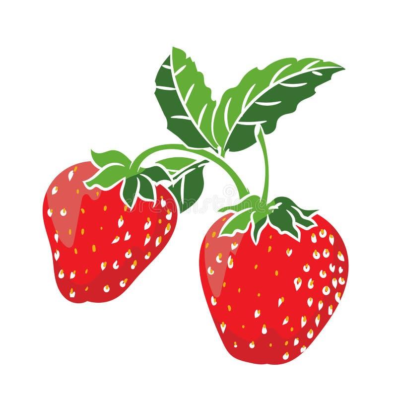Illustrations-Erdbeere - Vektor-Illustration vektor abbildung