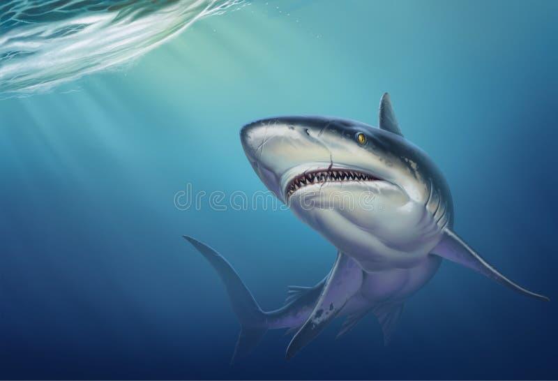 Reef shark on depth realistic background illustration. royalty free illustration