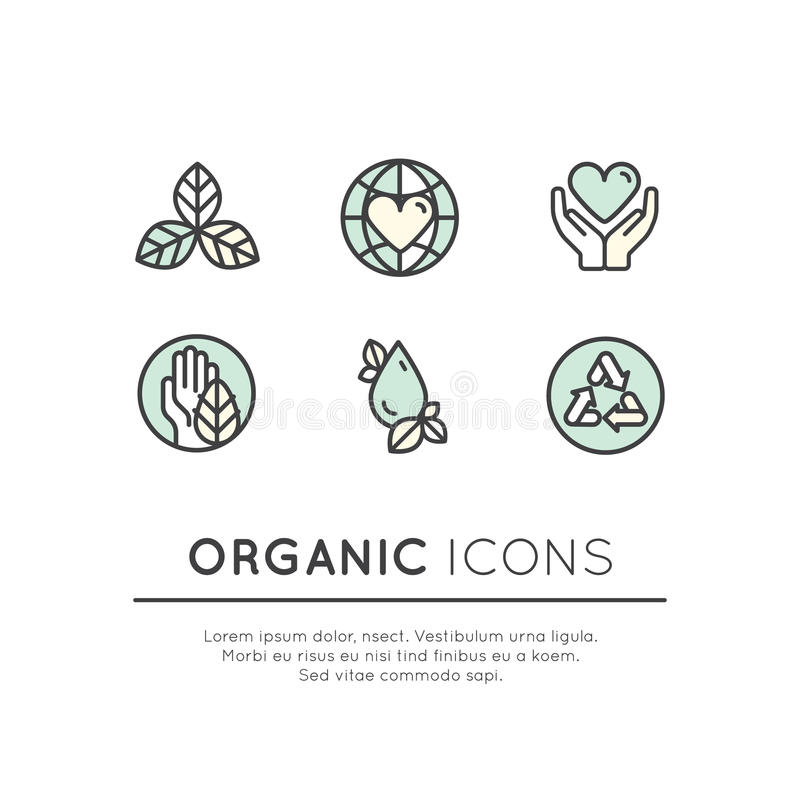 Illustrations-Logo Set Badge Fresh Organic-Produkte lizenzfreie abbildung