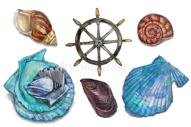 Illustrations of nautical elements. Hand drawn watercolor painting on white background stock photo