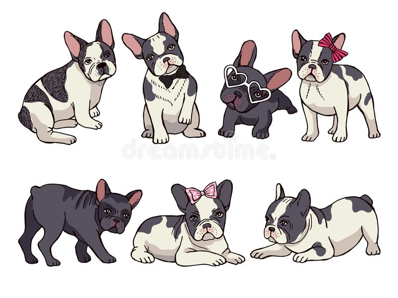 Illustrations set of cute little French bulldog. Funny pictures of puppy vector illustration