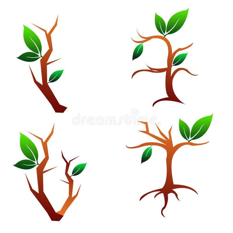 Illustration Four Tree and Leaves stock illustration