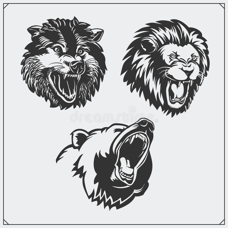 Illustrations of wild animals. Bear, lion and wolf. royalty free illustration