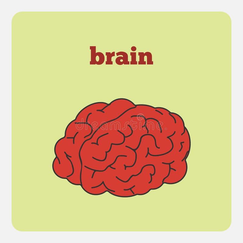 Illustrationsgehirn stock abbildung