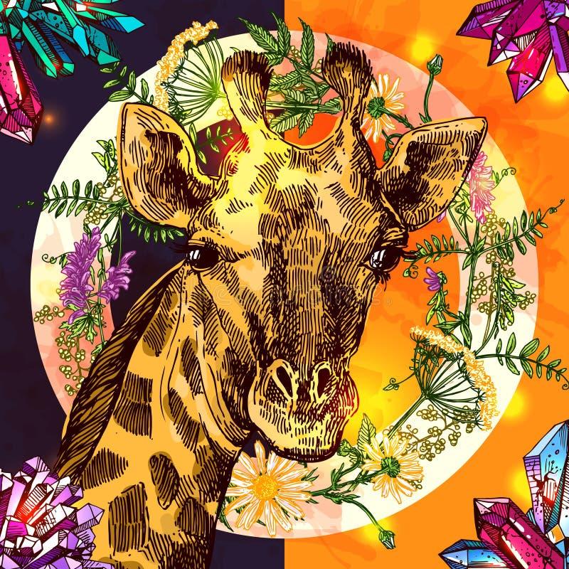 Illustrationsporträt og Giraffe Beautful Hand gezeichnete lizenzfreie abbildung