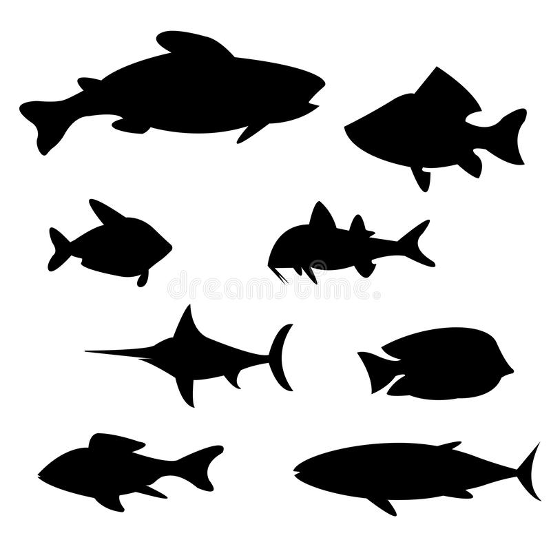 Illustrationsvektor von verschiedenen Arten von Fischen vektor abbildung