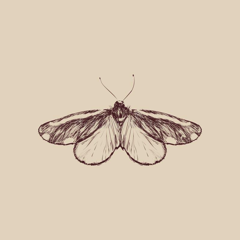 Illustrationteckningsstil av fjärilen stock illustrationer